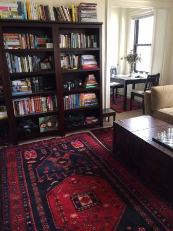 persian rug from lincoln park